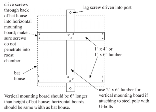 Bat House Construction And Installation